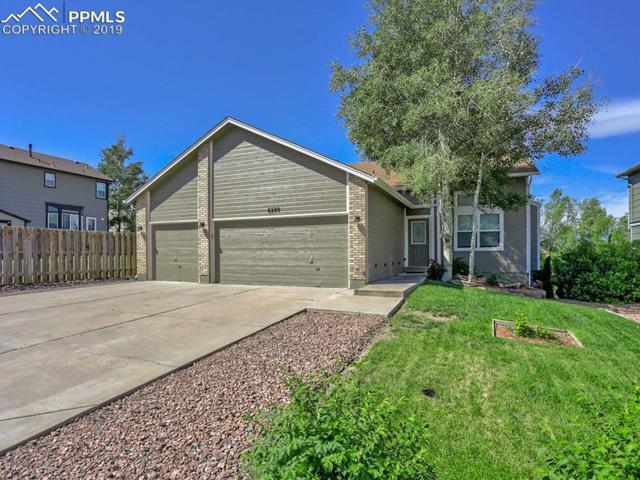 6280 Oakwood Boulevard, Colorado Springs, CO 80923 (#8685302) :: CC Signature Group