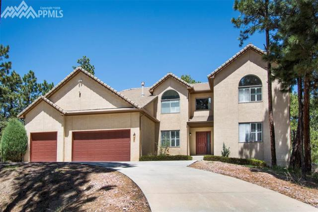 380 Powderhorn Drive, Monument, CO 80132 (#8686104) :: 8z Real Estate