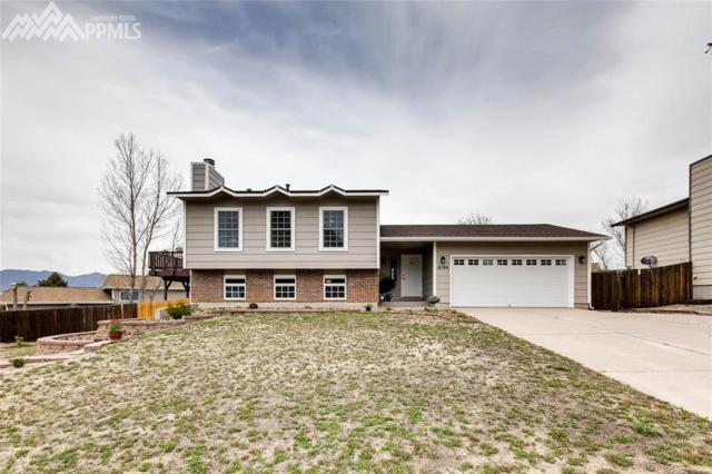 8199 Horizon Drive, Colorado Springs, CO 80920 (#8687710) :: 8z Real Estate