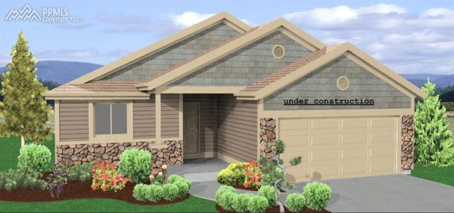 17945 White Marble Drive, Monument, CO 80132 (#8690680) :: 8z Real Estate