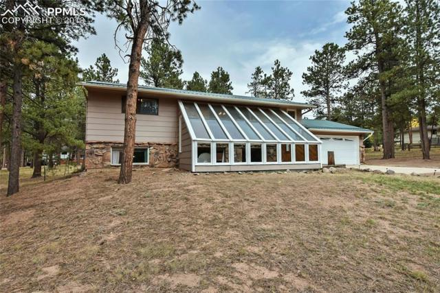 700 Sunnywood Lane, Woodland Park, CO 80863 (#8692689) :: 8z Real Estate
