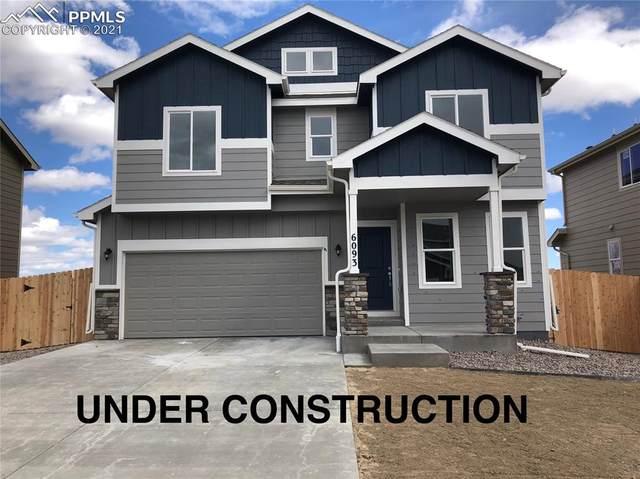 6776 Skuna Drive, Colorado Springs, CO 80925 (#8693002) :: Finch & Gable Real Estate Co.