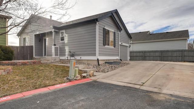 3020 Cascade Falls Point, Colorado Springs, CO 80922 (#8695426) :: Relevate Homes | Colorado Springs
