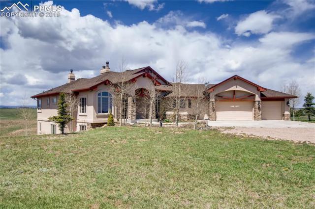 6905 Alpaca Heights, Colorado Springs, CO 80908 (#8699384) :: Fisk Team, RE/MAX Properties, Inc.