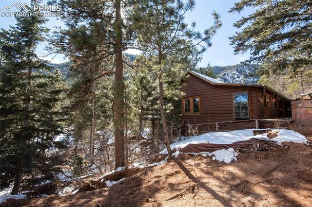 11000 Belvidere Avenue, Green Mountain Falls, CO 80819 (#8701839) :: Fisk Team, RE/MAX Properties, Inc.