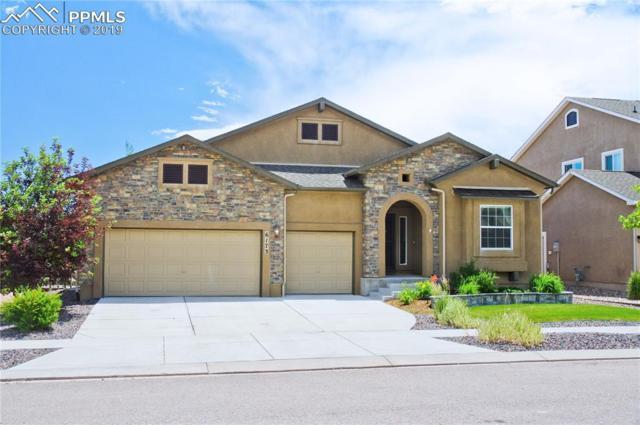 6173 Rennert Drive, Colorado Springs, CO 80924 (#8707255) :: The Kibler Group