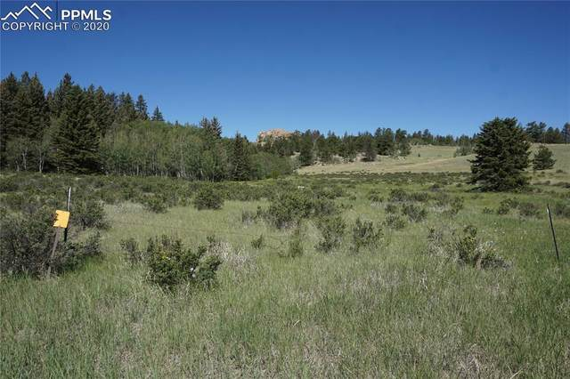 321 Forest Lane, Lake George, CO 80827 (#8709702) :: Finch & Gable Real Estate Co.