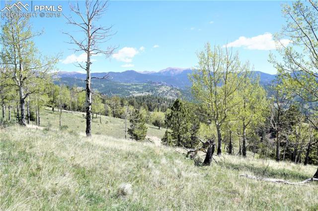 801 Bradley Ranch View, Victor, CO 80860 (#8711574) :: Compass Colorado Realty