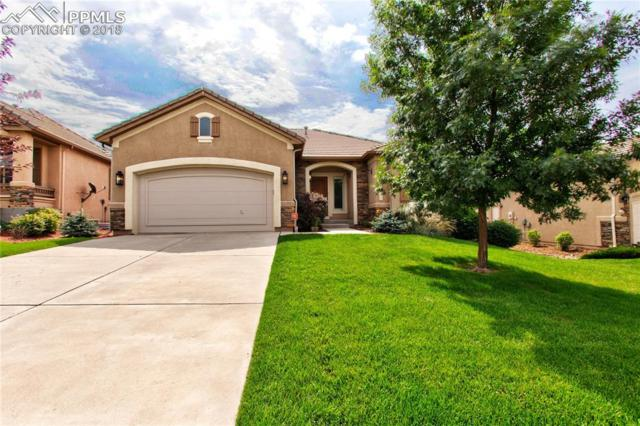 2633 Cinnabar Drive, Colorado Springs, CO 80921 (#8714867) :: The Hunstiger Team