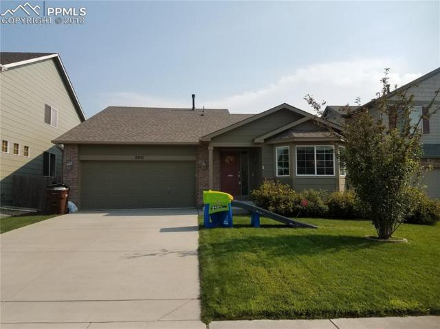 7851 Tennis Lane, Colorado Springs, CO 80951 (#8715281) :: Jason Daniels & Associates at RE/MAX Millennium