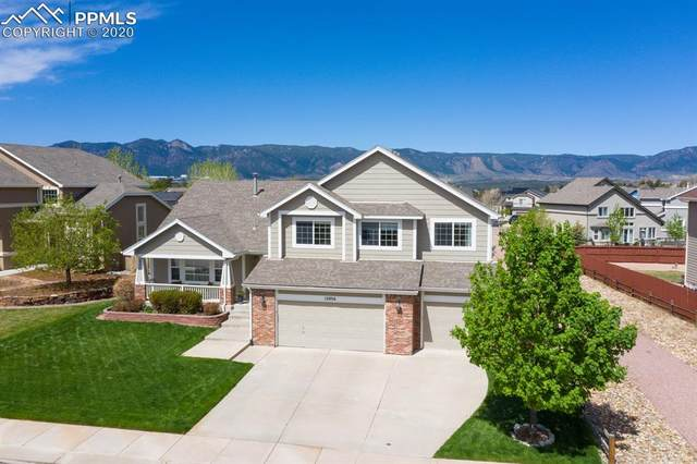 13836 Antelope Pass Place, Colorado Springs, CO 80921 (#8715894) :: Action Team Realty