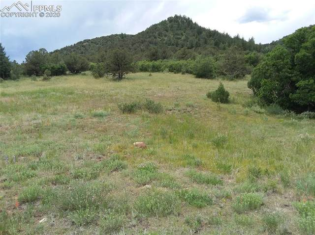 Lot 27 Backacres Road, Canon City, CO 81212 (#8716204) :: 8z Real Estate