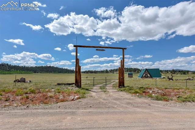 8009 County Road 53 Road, Hartsel, CO 80449 (#8716508) :: CC Signature Group