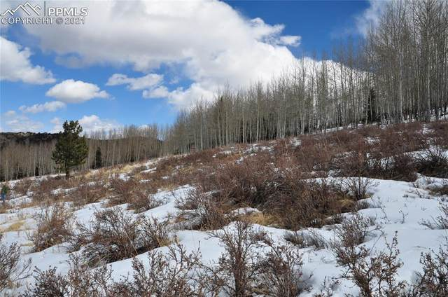 308 Troy Way, Cripple Creek, CO 80813 (#8718259) :: The Gold Medal Team with RE/MAX Properties, Inc