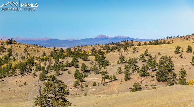 Selah Road, Hartsel, CO 80449 (#8718504) :: Tommy Daly Home Team
