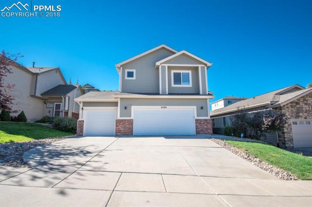 8286 Kettle Drum Street, Colorado Springs, CO 80922 (#8719436) :: The Treasure Davis Team
