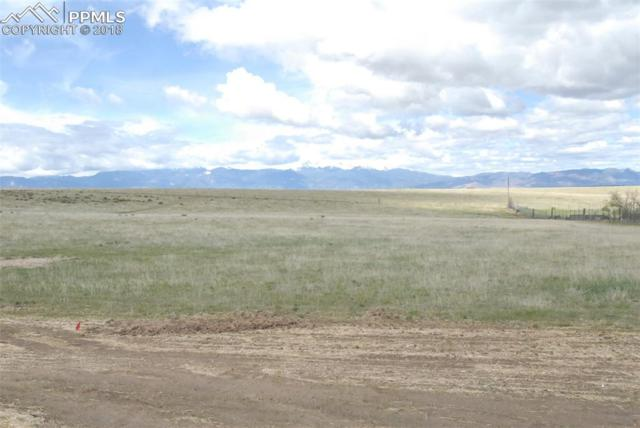 2990 Hoofprint Road, Peyton, CO 80831 (#8724913) :: 8z Real Estate
