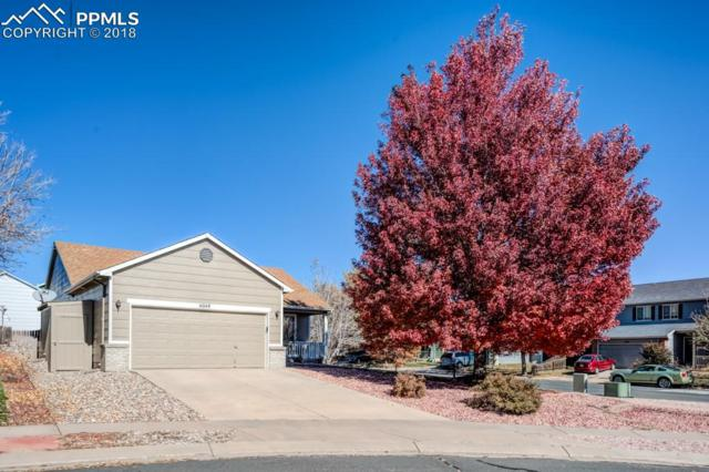 6048 Whetstone Drive, Colorado Springs, CO 80923 (#8725238) :: CC Signature Group
