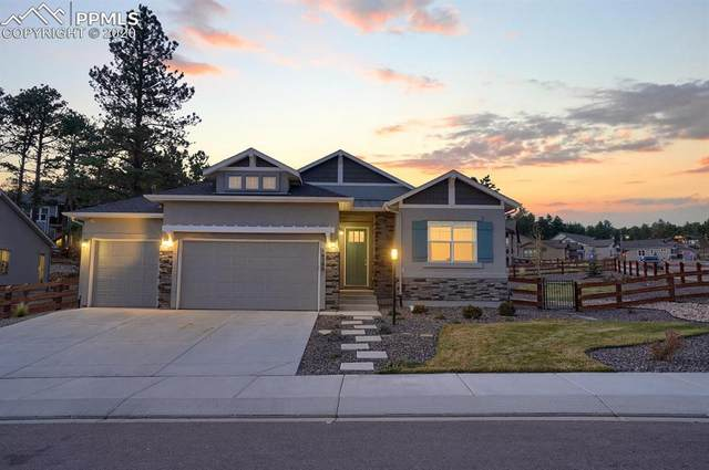 16386 Shadow Cat Place, Monument, CO 80132 (#8726910) :: The Kibler Group