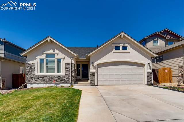 2642 Equine Court, Colorado Springs, CO 80922 (#8728377) :: CC Signature Group
