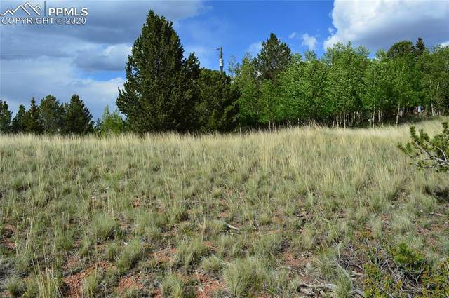 1496 Fairview Drive, Cripple Creek, CO 80813 (#8728772) :: Action Team Realty