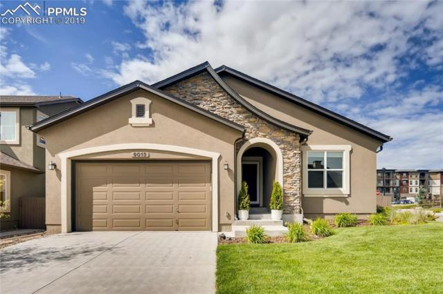9013 Rollins Pass Court, Colorado Springs, CO 80924 (#8729003) :: Action Team Realty