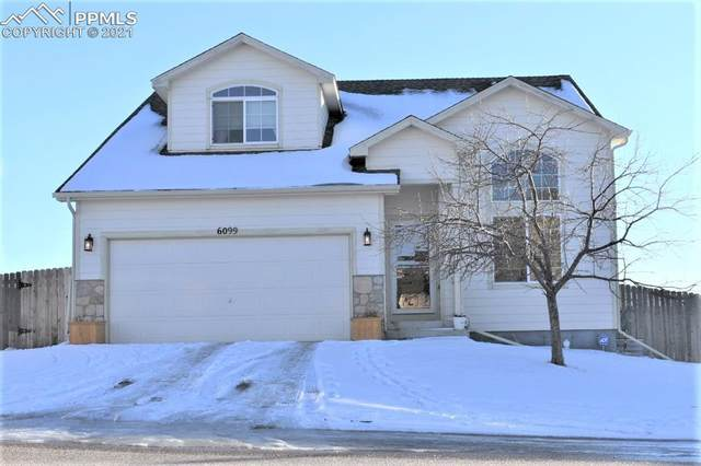6099 Passing Sky Drive, Colorado Springs, CO 80911 (#8729019) :: Finch & Gable Real Estate Co.