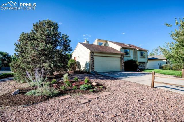 3545 Fair Dawn Drive, Colorado Springs, CO 80920 (#8729465) :: Jason Daniels & Associates at RE/MAX Millennium