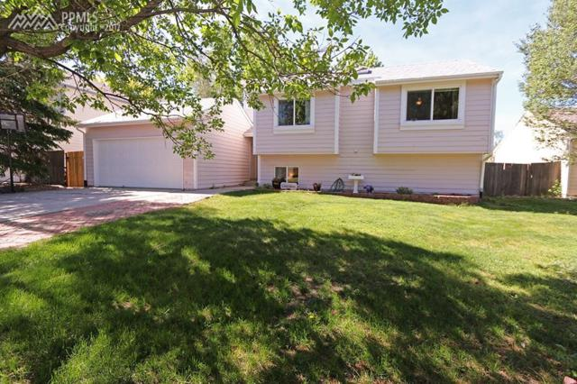 3845 Weather Vane Drive, Colorado Springs, CO 80920 (#8730350) :: Action Team Realty
