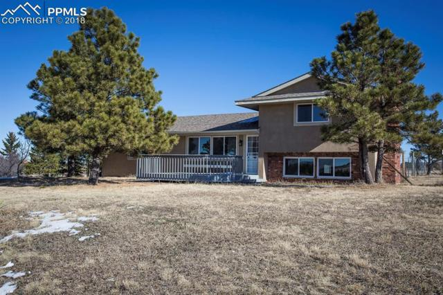 17945 Steeplechase Drive, Peyton, CO 80831 (#8730442) :: Action Team Realty