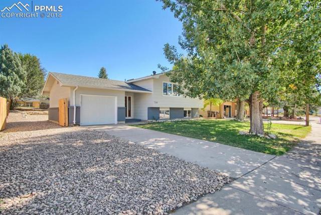 7265 Fortman Terrace, Fountain, CO 80817 (#8732189) :: 8z Real Estate