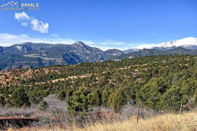 4315 Cavern Ridge Road, Colorado Springs, CO 80904 (#8733882) :: The Peak Properties Group