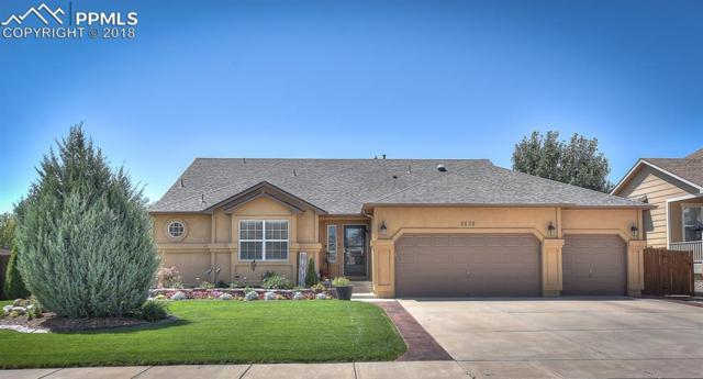 3838 Roan Drive, Colorado Springs, CO 80922 (#8734082) :: The Treasure Davis Team