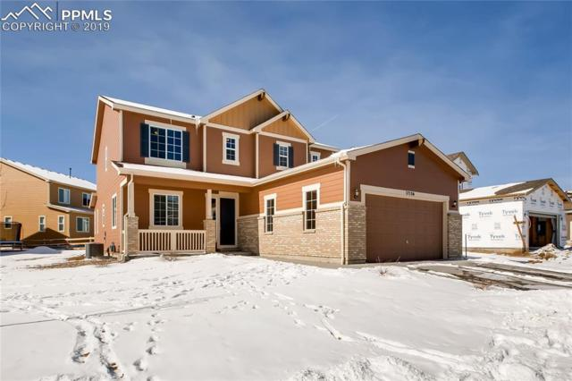 17536 Leisure Lake Drive, Monument, CO 80132 (#8734741) :: CC Signature Group