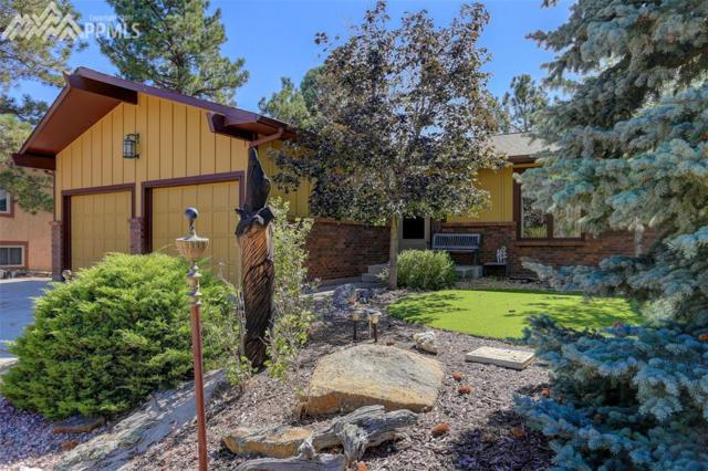 5818 Spurwood Court, Colorado Springs, CO 80918 (#8741082) :: 8z Real Estate