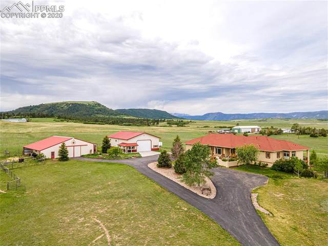 13273 Furrow Road, Larkspur, CO 80118 (#8741464) :: Tommy Daly Home Team