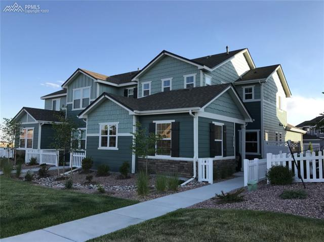 8853 Lily Grace Point, Colorado Springs, CO 80924 (#8741640) :: Jason Daniels & Associates at RE/MAX Millennium