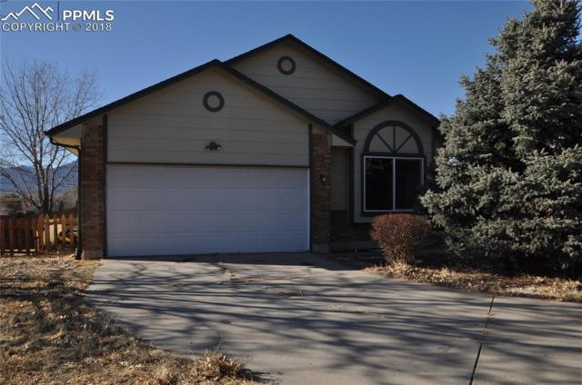 310 Oneil Court, Colorado Springs, CO 80911 (#8742061) :: Harling Real Estate