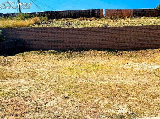 30 Audubon Drive, Colorado Springs, CO 80910 (#8743378) :: Tommy Daly Home Team