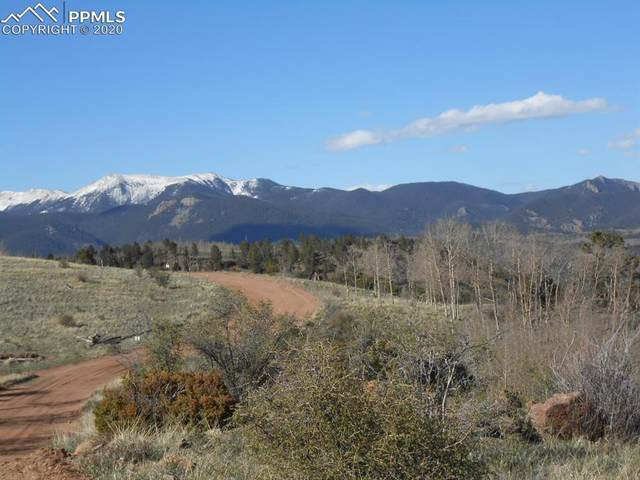 TBD County Road 863, Victor, CO 80860 (#8745594) :: Fisk Team, RE/MAX Properties, Inc.