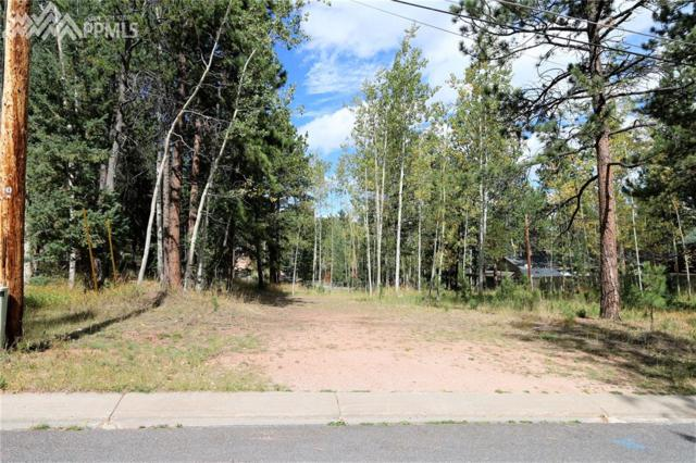 W Browning Avenue, Woodland Park, CO 80863 (#8747425) :: Group 46:10 Colorado Springs
