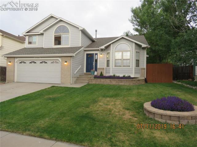 7799 Julynn Road, Colorado Springs, CO 80919 (#8748783) :: 8z Real Estate