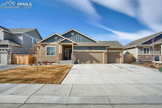 6730 Phantom Way, Colorado Springs, CO 80925 (#8749718) :: 8z Real Estate