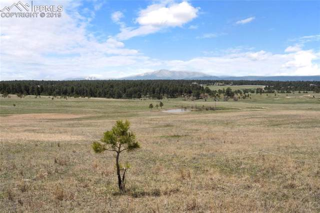 00 E Palmer Divide Avenue, Larkspur, CO 80118 (#8750757) :: 8z Real Estate