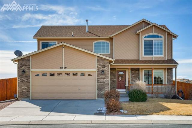 8219 Barn Swallow Grove, Colorado Springs, CO 80925 (#8757657) :: 8z Real Estate