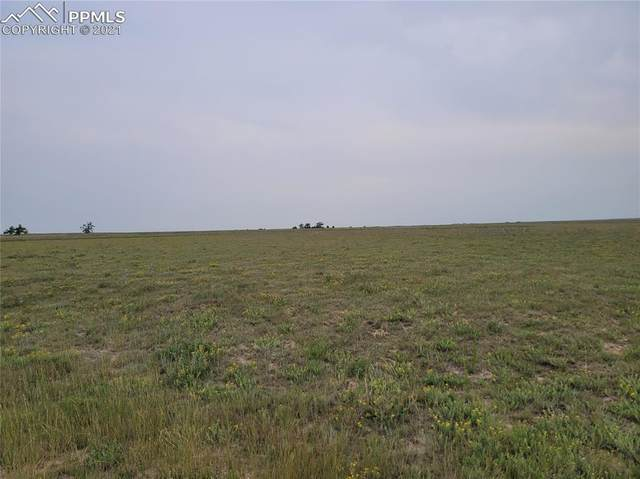 37045-1 Highway 94 Highway, Yoder, CO 80864 (#8759501) :: Tommy Daly Home Team