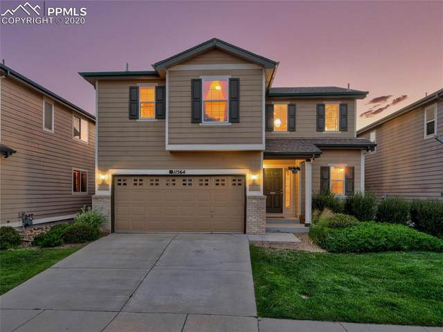 11564 Black Maple Lane, Colorado Springs, CO 80921 (#8760934) :: Compass Colorado Realty
