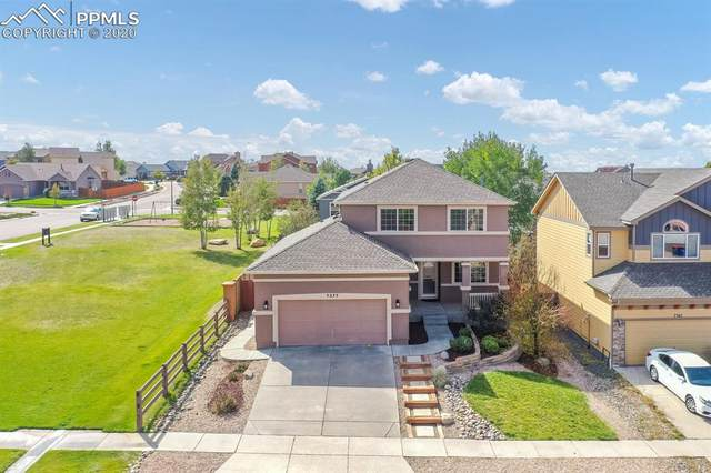 7377 Indian River Drive, Colorado Springs, CO 80923 (#8765453) :: Tommy Daly Home Team