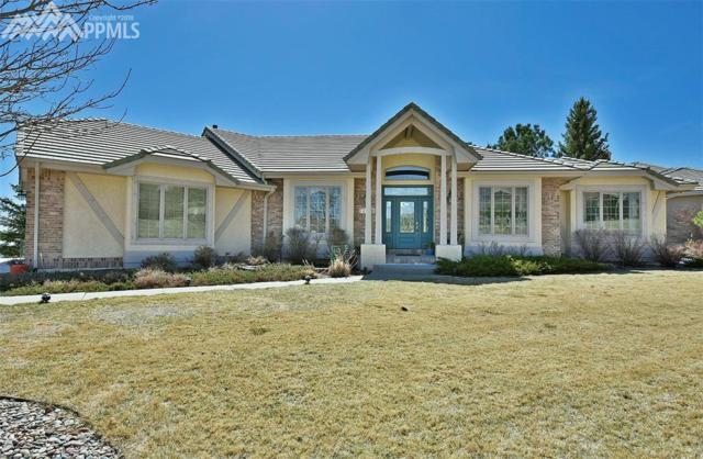 2745 Brogans Bluff Drive, Colorado Springs, CO 80919 (#8767122) :: 8z Real Estate