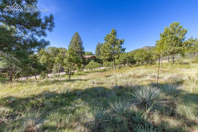 2510 Hercules Drive, Colorado Springs, CO 80906 (#8769080) :: 8z Real Estate